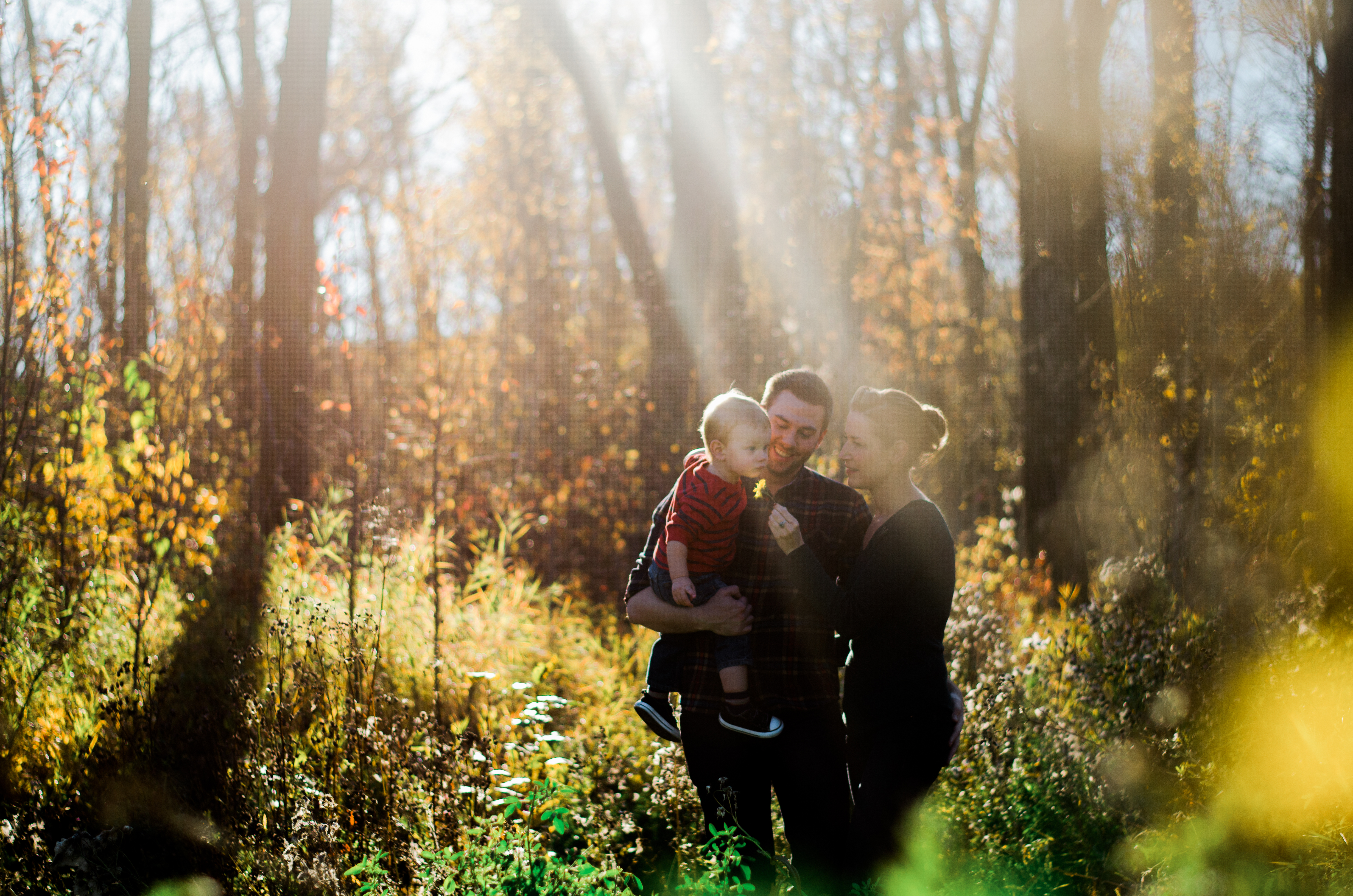 edmonton photographer yew photography fall family photo