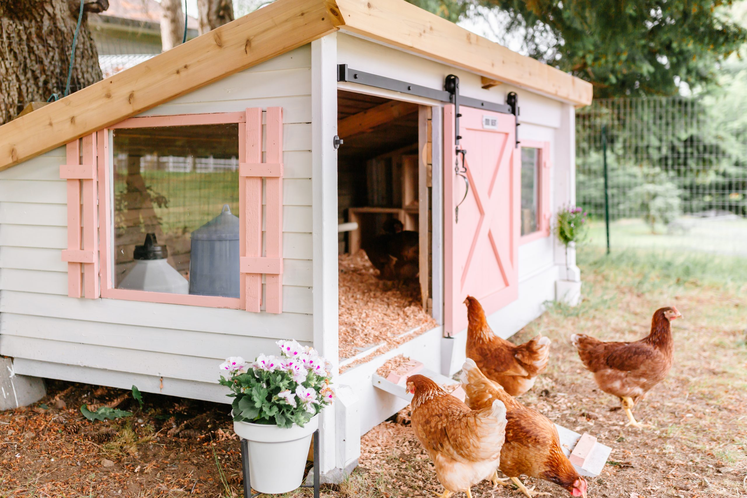 backyard chicken coop makeover white and pink cottage