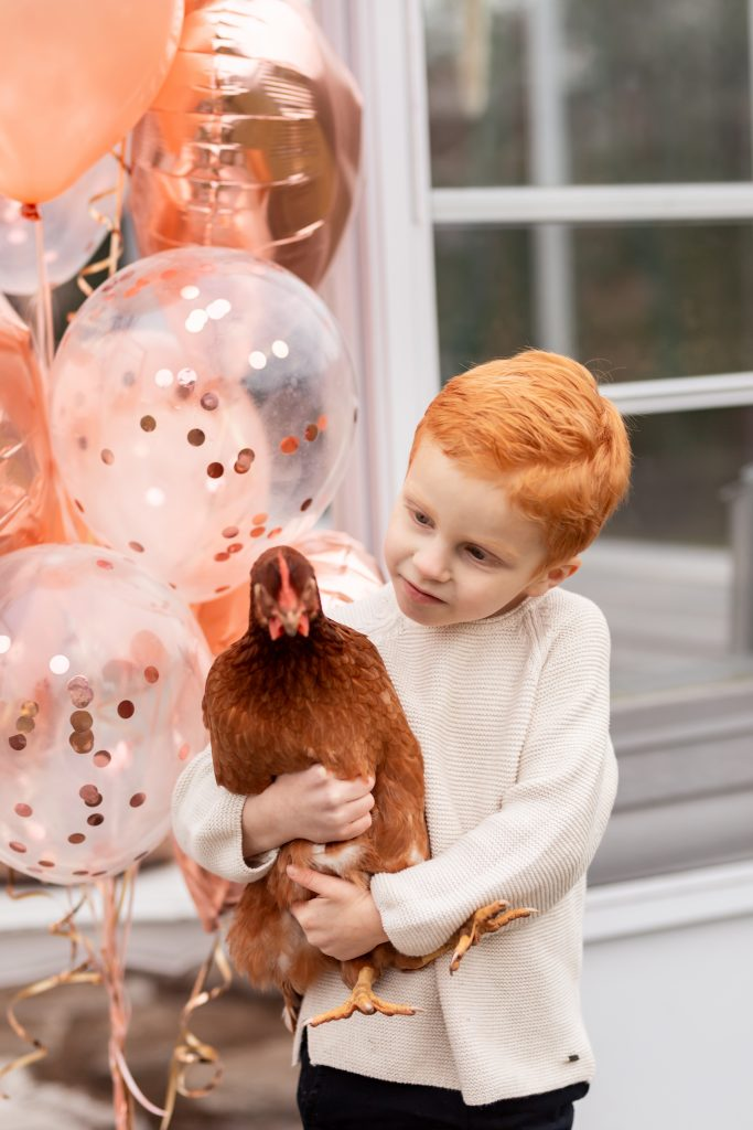 boy holding chicken in valentines mini session